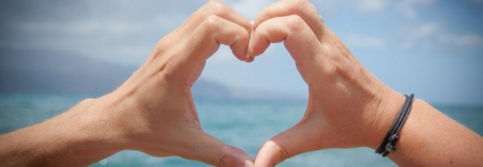 Best Way to Reverse Heart Disease