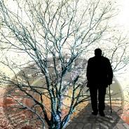 Steps to Reverse Alzheimer' Disease